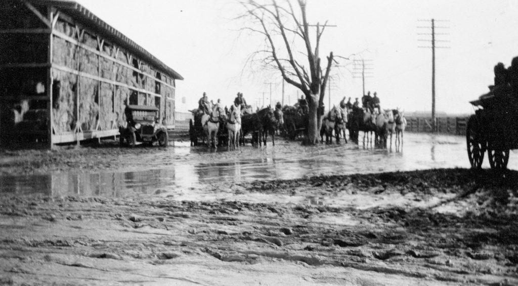 Animal Embarkation Depot, Front Royal, circa 1917.